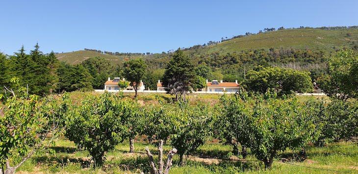 Casas de Alpedrinha, Fundão, Portugal © Viaje Comigo